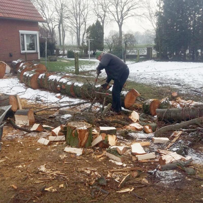 2 Generationen beim Brennholz schlagen